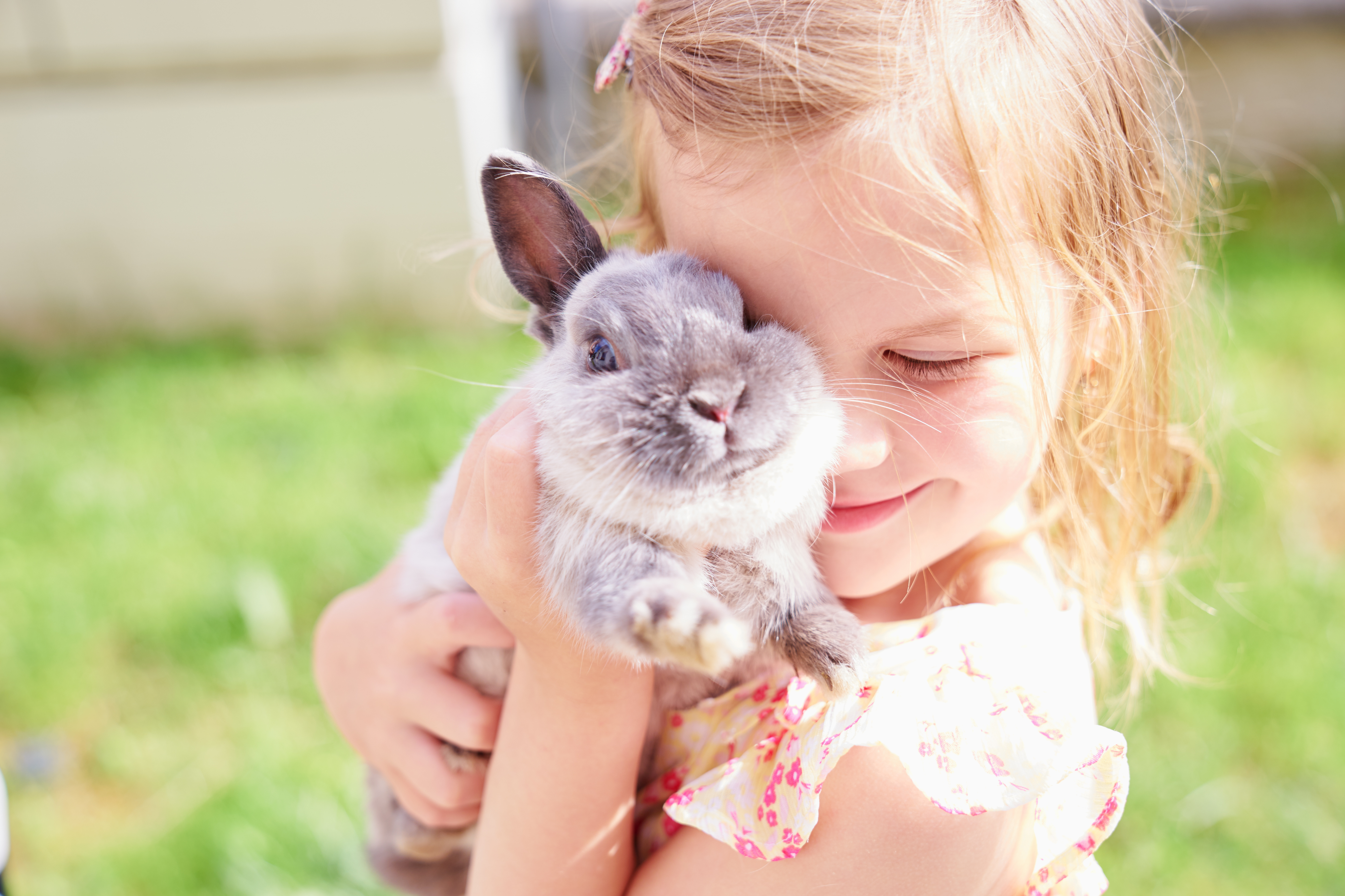 A girl and a rabbit