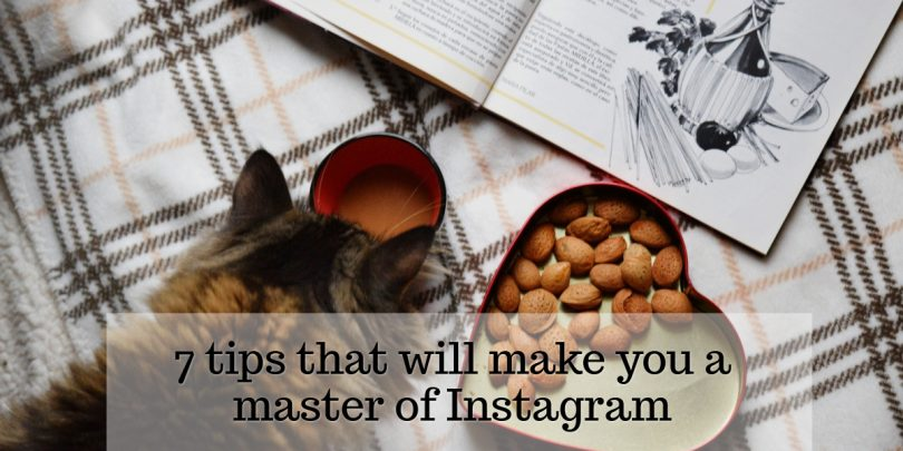 7 tips that will make you a master of Instagram