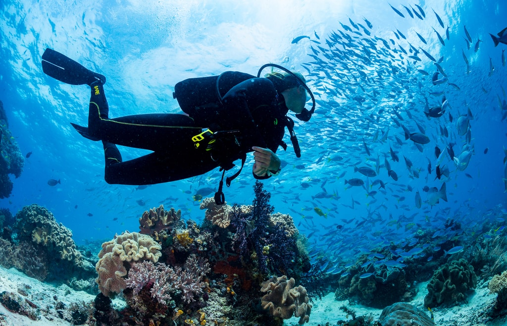 SCUBA DIVING VACATIONS - A GREAT REASON TO EXPAND YOUR DIVING HORIZONS