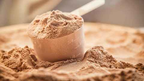 Top 5 Budget Whey Protein Powder in India 2020