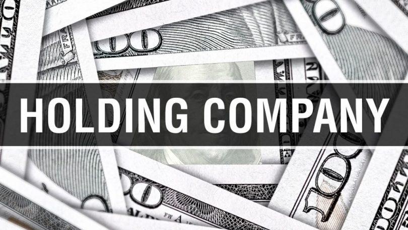 Holding Company the same as an LLC