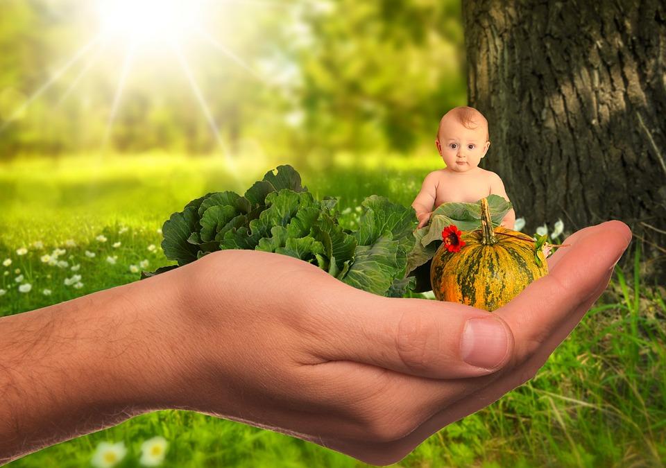 https://pixabay.com/photos/child-infant-vegetables-fruit-2002083/