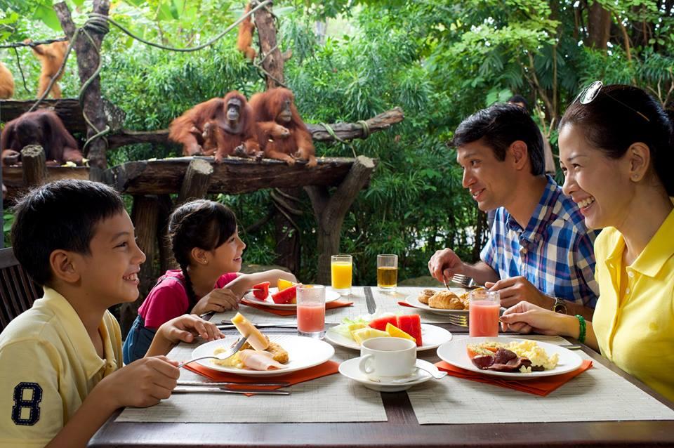 Breakfast with Orangutans in Singapore