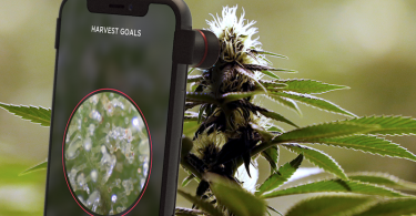 Smart Grow Apps for Growing Cannabis