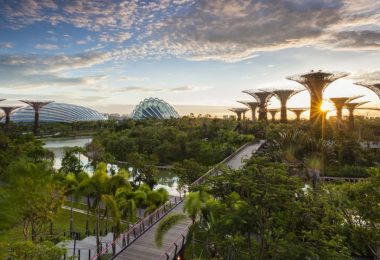 The Most Ecologically Friendly Ways to Travel