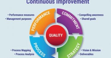 Continuous vs. Constant Innovations: Which Option Can Be More Relevant for the IT Industry?