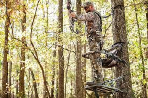 THINGS TO KNOW BEFORE BUYING BEST CLIMBING TREE STAND