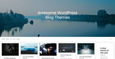 Top Best Wordpress