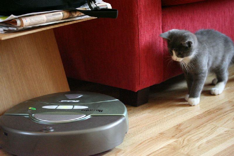 Robot Vacuum Cleaner Pets.jpg