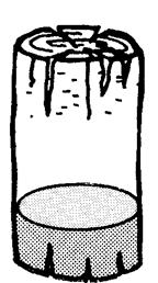 word image 21