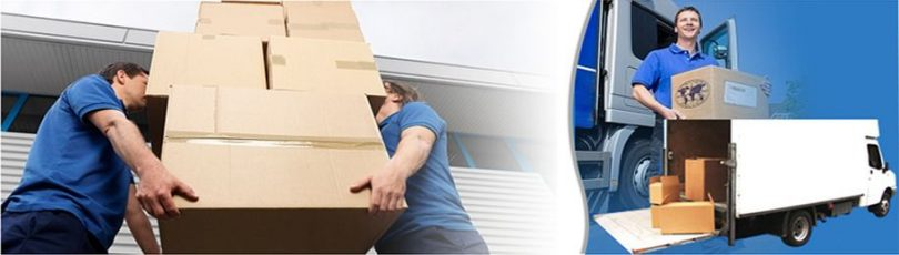 What To Expect From A Professional Removal Service?
