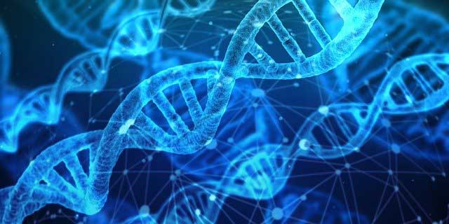 Four Benefits of Taking a DNA Test