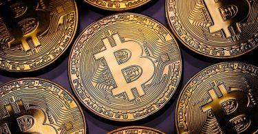 Bitcoin Investor